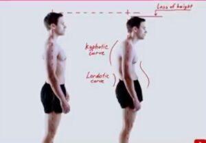 Body postures